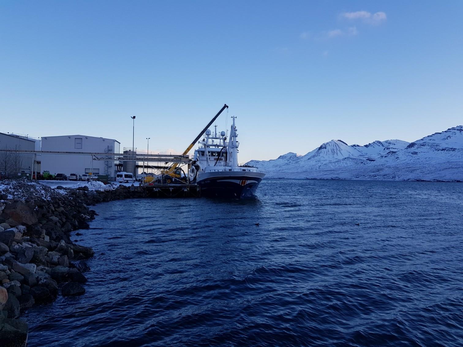 Østerbris við bryggju á Fáskrúðsfirði