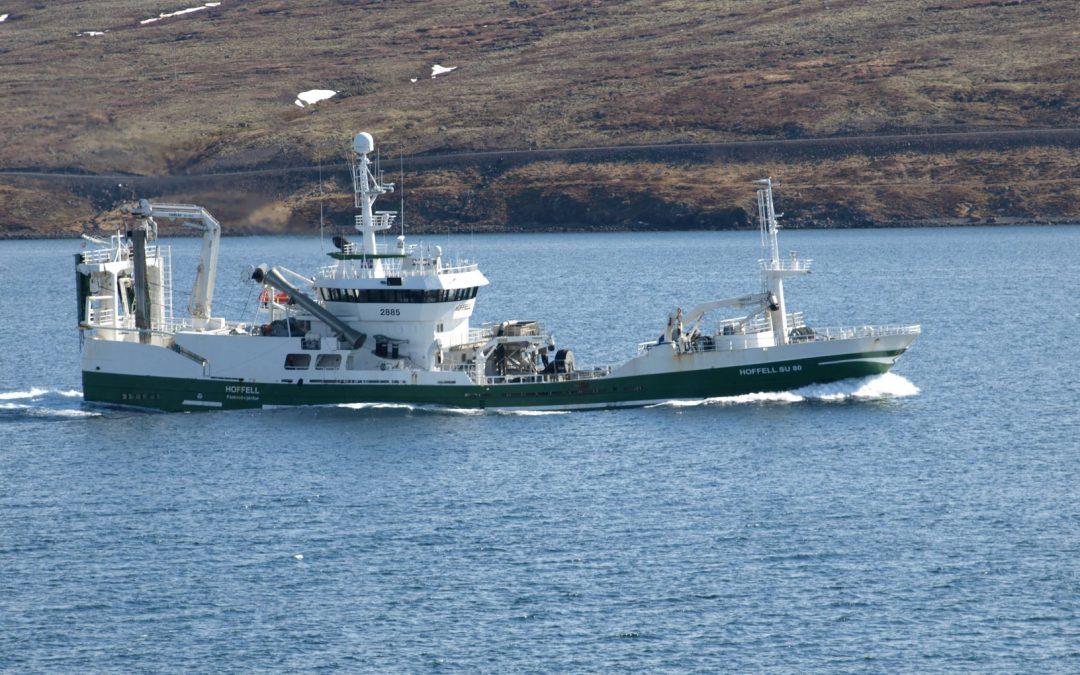 Hoffell með 10.000 tonn