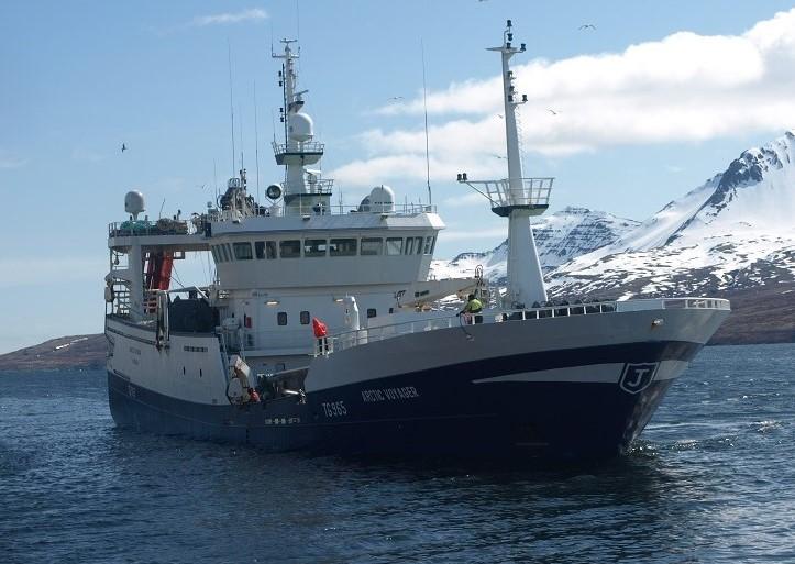 Arctic Voyager